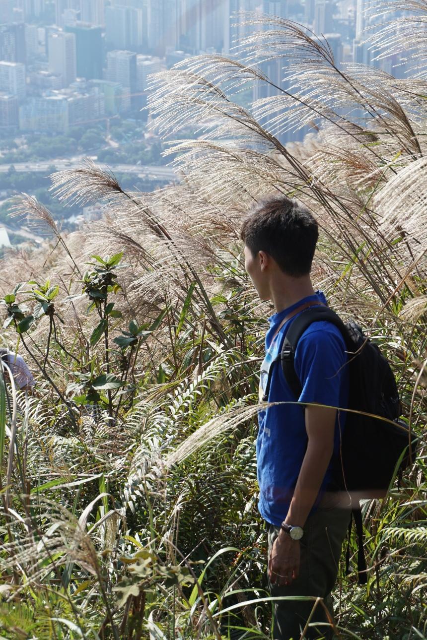 自殺崖 香港行山雜誌 遠足 遊記路線 報道 風火山林