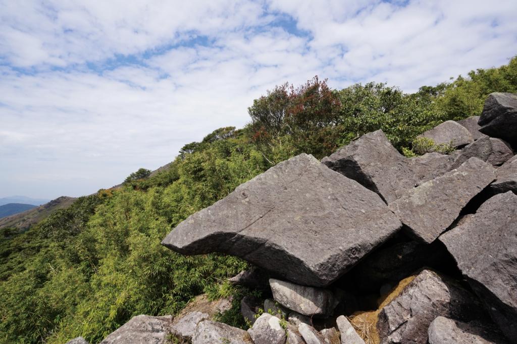 竹海石林的大咀鳥石外形神似。